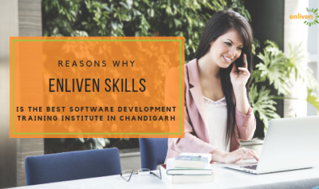 Reasons why Enliven Skills is the best software development training institute in Chandigarh?