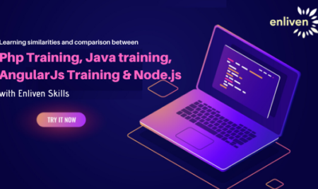 Learning similarities and comparison between Php Training, Java training, AngularJs Training & Node.js with Enliven Skills